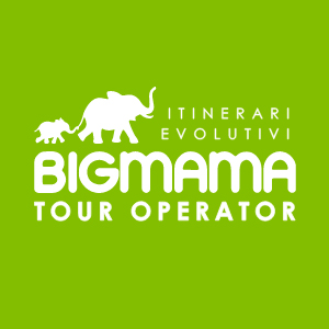 Logo BIGMAMA.TRAVEL