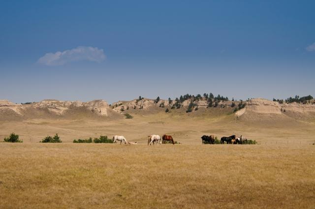 L'OYATE TRAIL: percorso nel patrimonio dei nativi indiani Sioux in South Dakota